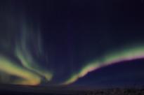 murphys-aurora-2-50-of-53
