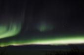 murphys-aurora-44-of-64
