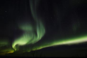 murphys-aurora-45-of-64