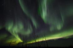 murphys-aurora-48-of-64