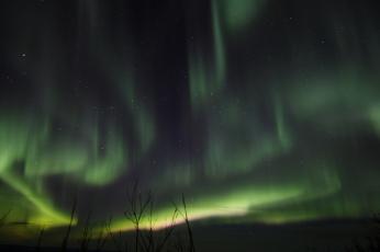murphys-aurora-49-of-64