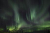 murphys-aurora-52-of-64