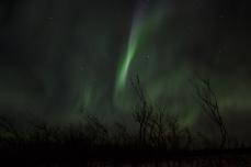 murphys-aurora-59-of-64