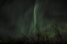 murphys-aurora-60-of-64