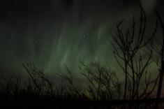 murphys-aurora-64-of-64
