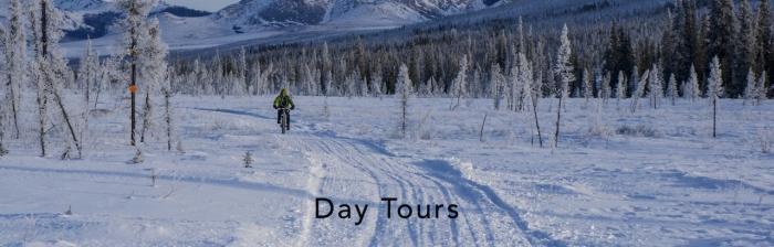 day-tours