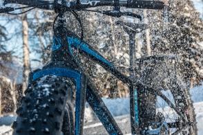 fatback-bike-17-of-25